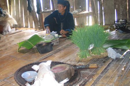 Tục thờ cúng vía lúa của người Dao